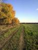 Белые столбы, осень 2011_2