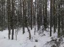 Карелия зима 2017_1